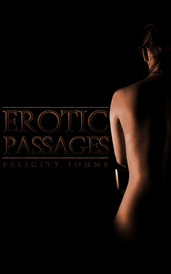 Cover image for Erotic Passages